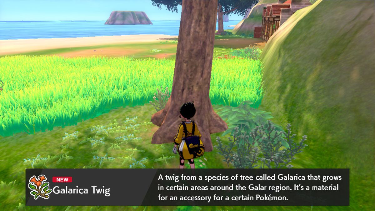 A Pokémon trainer standing in front of a tree. There's a tooltip explaining what a Galarica Twig is