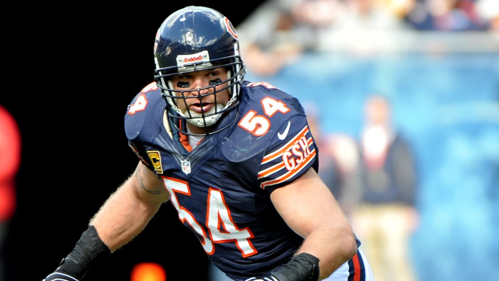 from Zaiden gay chicago bears