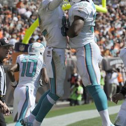 Sep 8, 2013; Cleveland, OH, USA; Miami Dolphins wide receiver Brian Hartline (82) and Miami Dolphins running back Daniel Thomas (33) celebrate Hartline's third quarter touchdown catch against the Cleveland Browns at FirstEnergy Stadium.