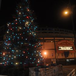 Another view of the holiday tree in front of the Cubs Store
