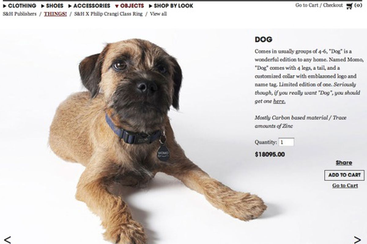 This dog isn't really for sale on the Shipley & Halmos site.