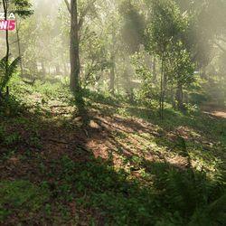 The Jungle biome.