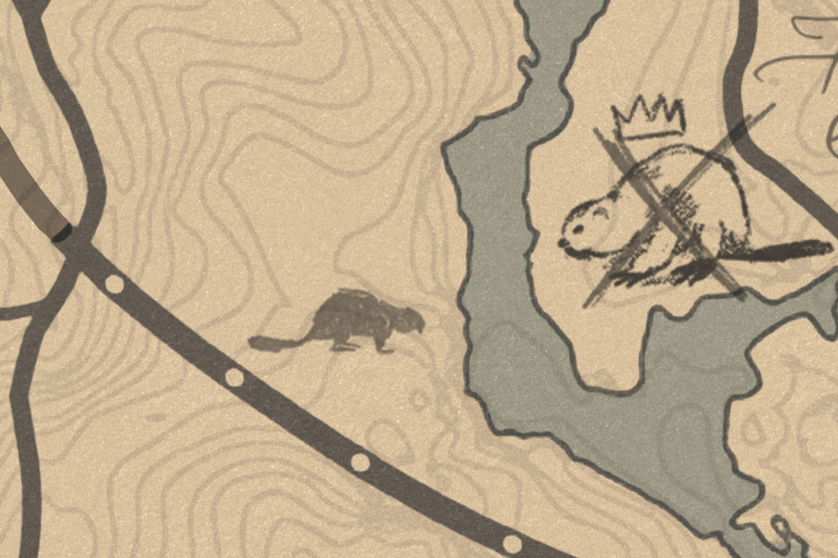 Red Dead Redemption 2beaver location map guide