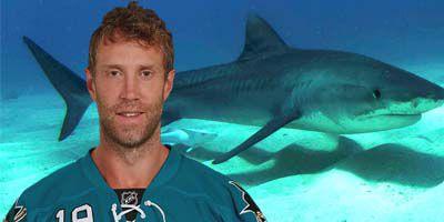 Joe Thornton Shark