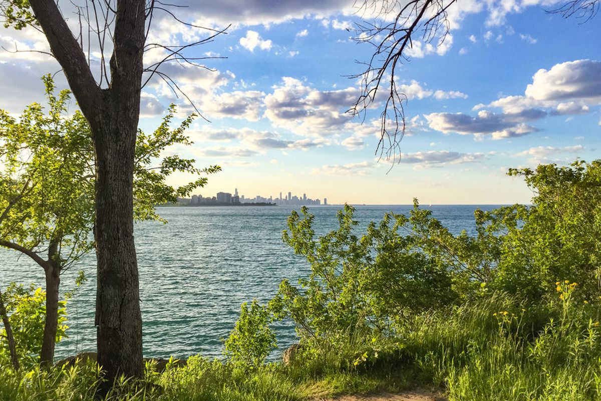 photo essay highlights the beauty of the south shore nature  eric allix rogers chicago patterns