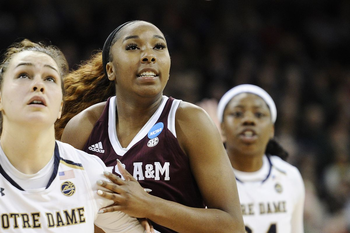 WBB: Ags take care of Florida - Good Bull Hunting