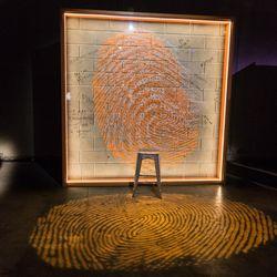 "The ""Orange is the New Black"" installation celebrates individual identity. | Erin Brown/Sun-Times"