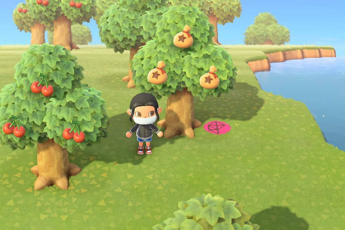 Grow Money Trees In Animal Crossing New Horizons Switch Polygon
