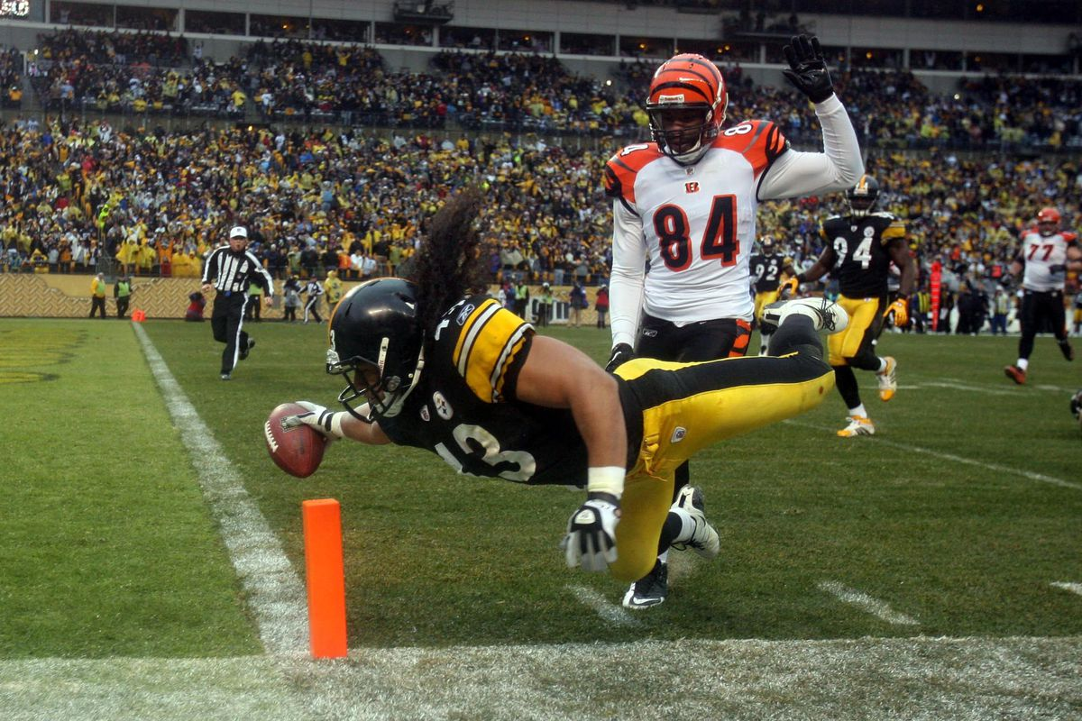 Bengals head coach Marvin Lewis praises Troy Polamalu and Ed Reed ... f1f025935