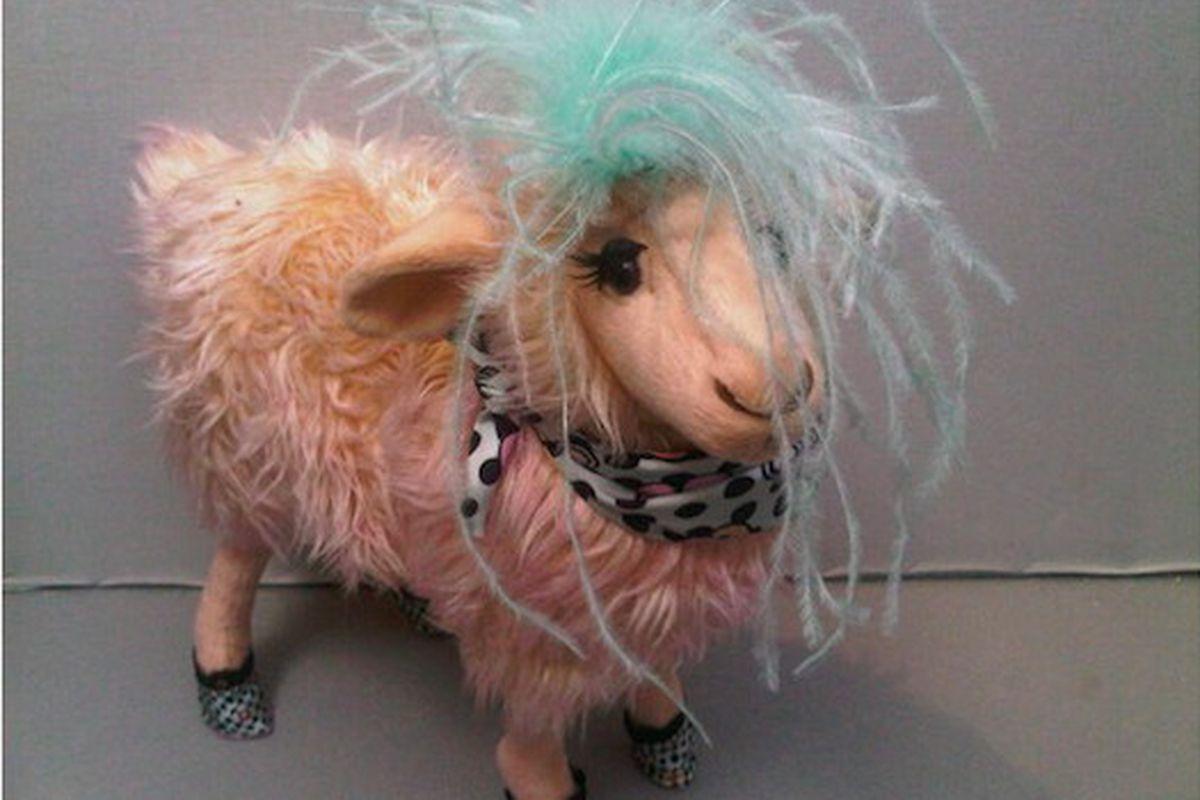 """Funbongo the Ungaro sheep, via <a href=""""http://twitpic.com/2ukpi4"""">@thelovemagazine</a>"""