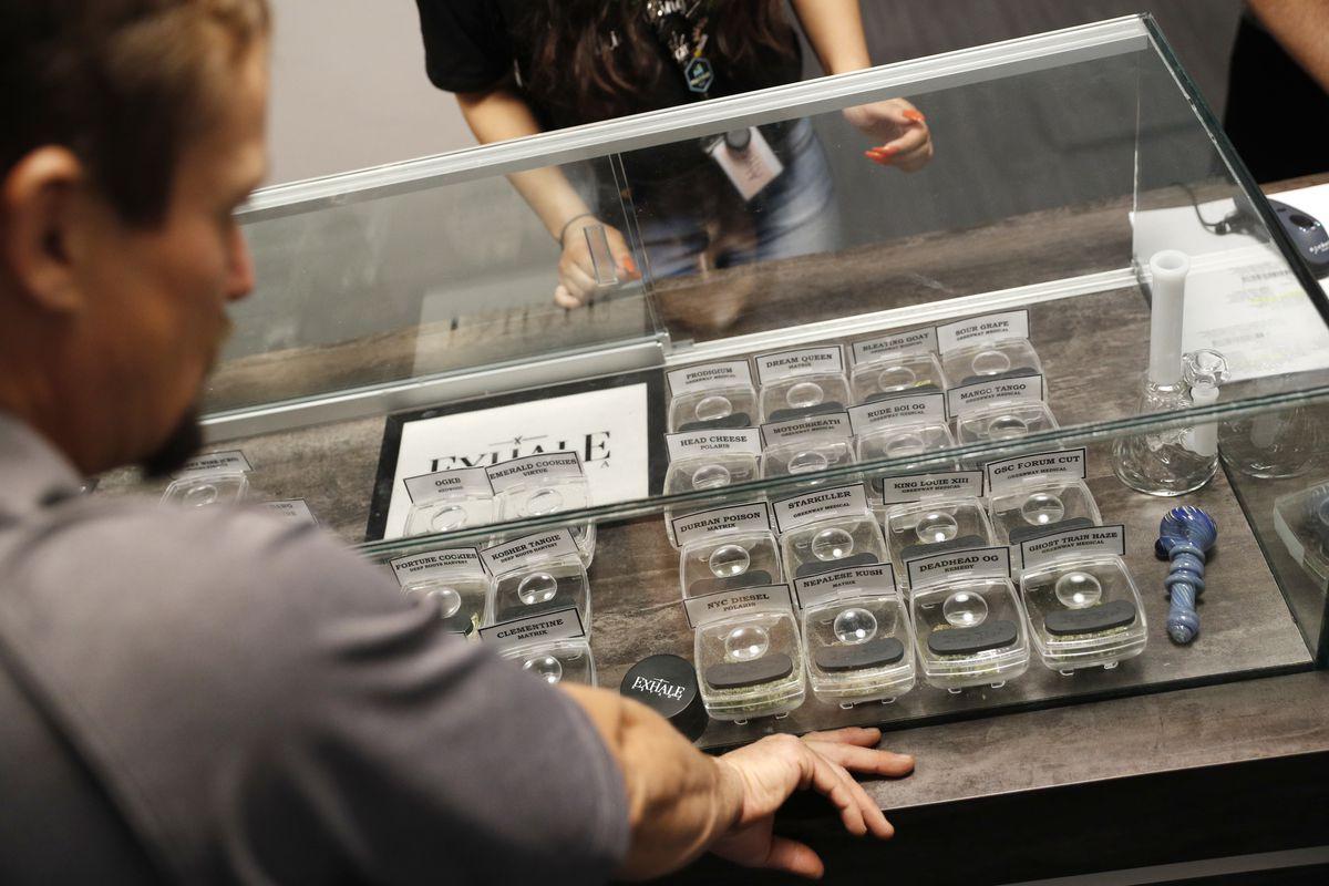 План из марихуаны форум конопля на ранних стадиях
