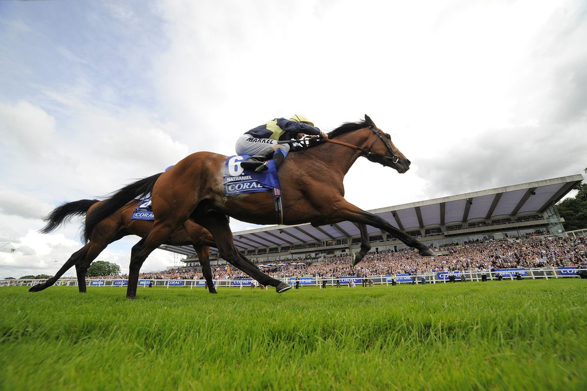 Nathaniel (IRE) headlines the 2012 Group 1 Irish Champion Stakes at Leopardstown on Saturday, September 8th.