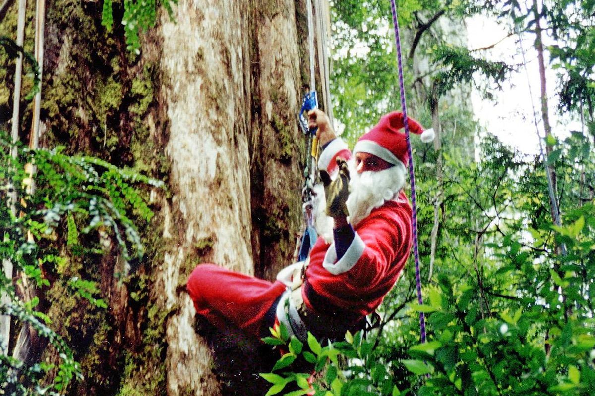 Santa climbs what is being hailed as the world's l