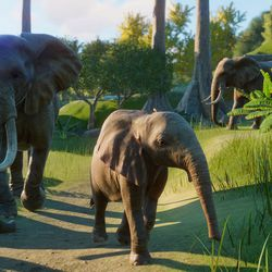 African elephant mama and calf in <em>Planet Zoo</em> for Windows PC.