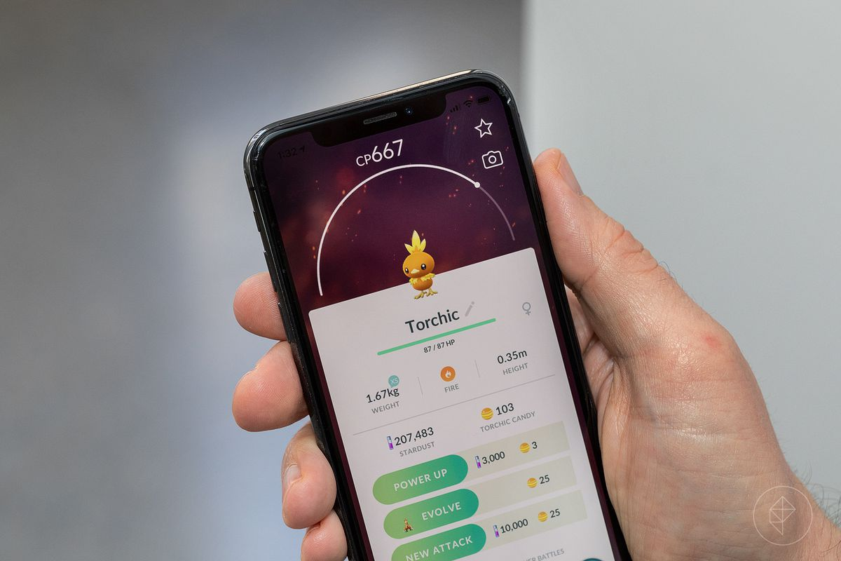 A hand holds up a phone with the Pokémon Go Torchic stat screen