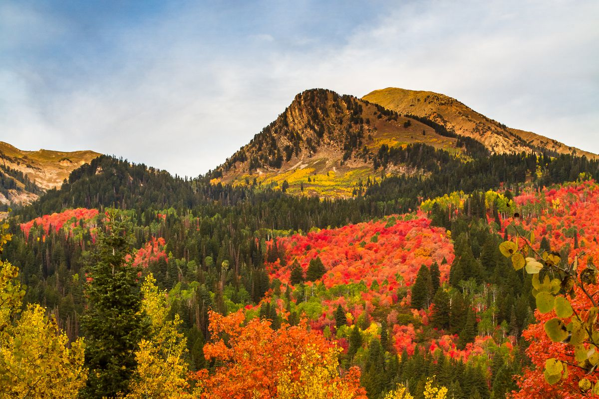 3 Utah Photographers Top Destinations For Fall Colors Deseret News