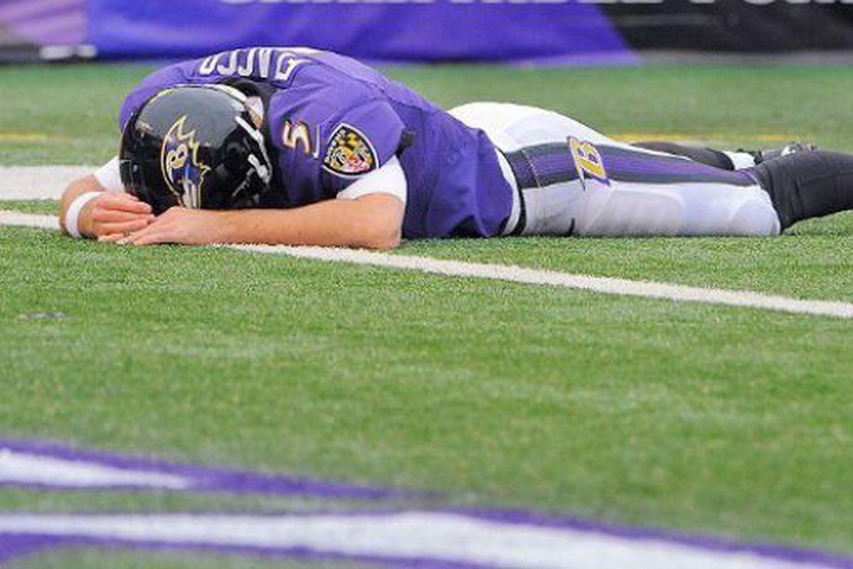 baltimore sun photo by karl merton ferron baltimore ravens franchise quarterback joe flacco