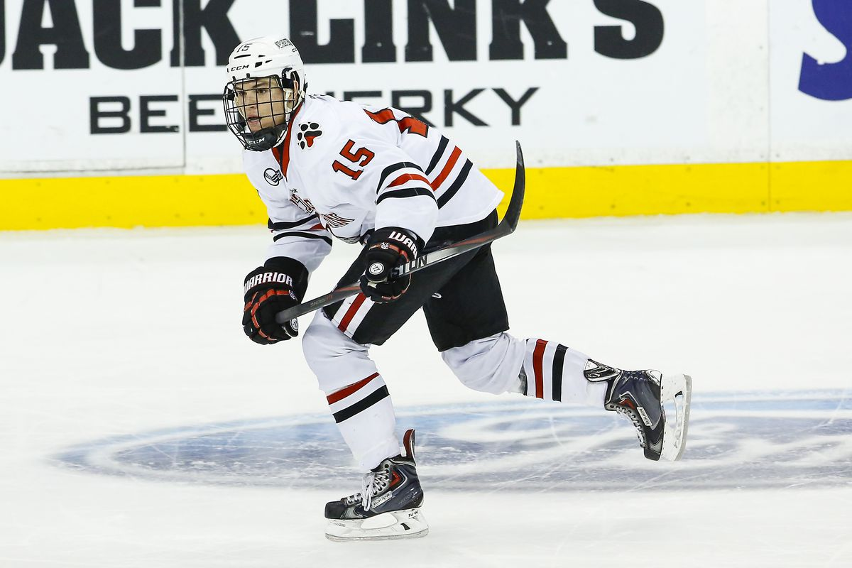 Kevin Roy recorded two assists on Friday night in his first game action since November.