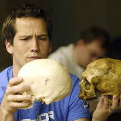 Joshua Speirs compares skulls during an evolutionary biology class at BYU in Provo on Friday, March 30, 2012.