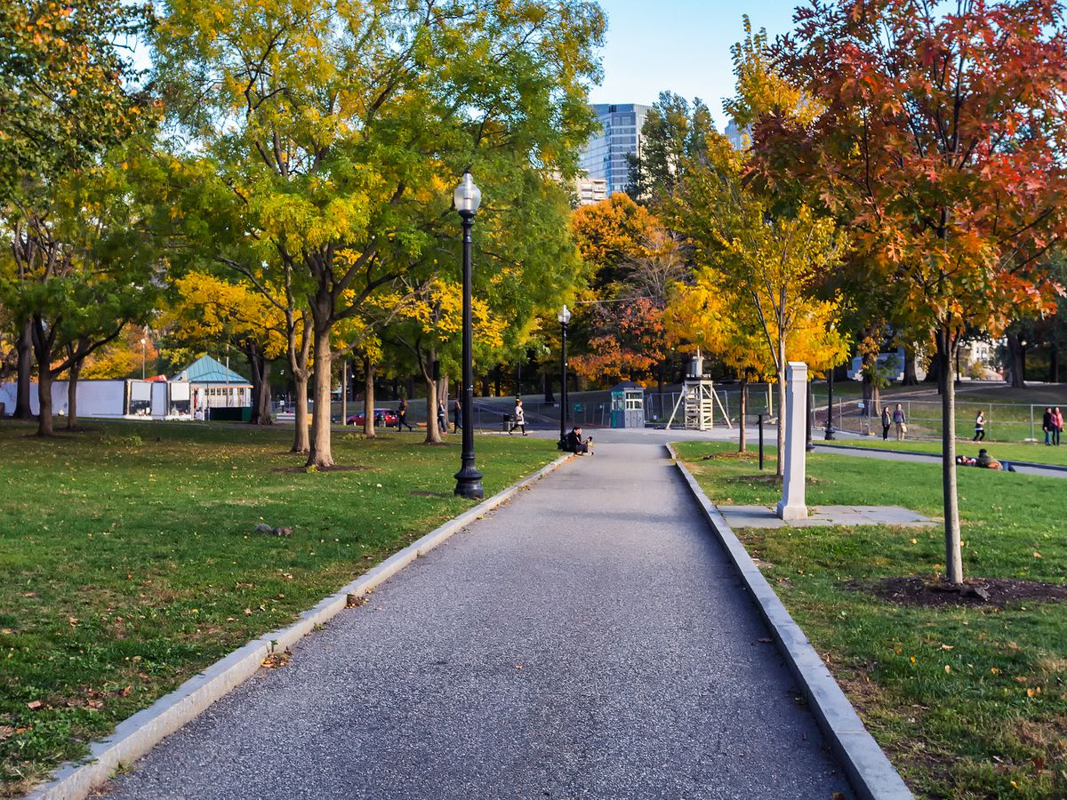 Leaves changing along a pathway in Boston Common.