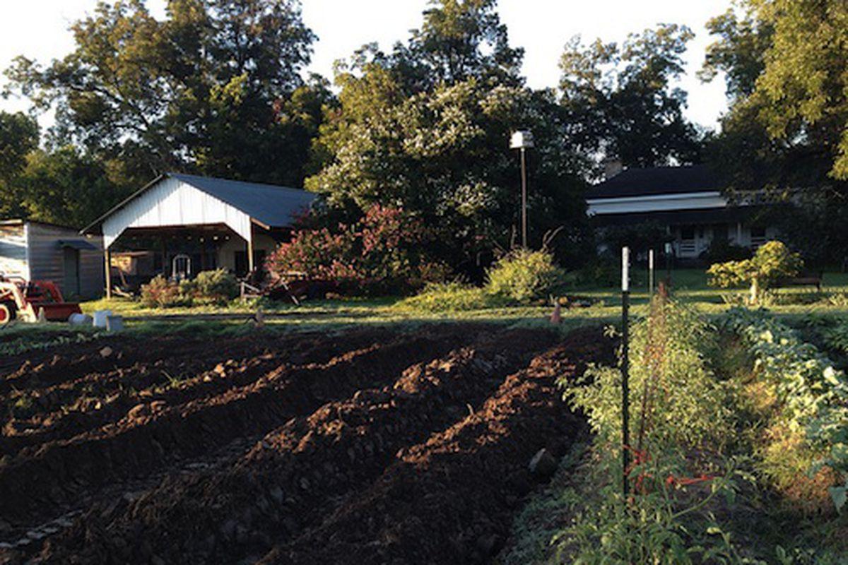 Boggy Creek Farm.
