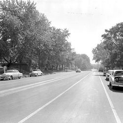 Trees line South Temple in July of 1953. Photographer failed to close his car's trunk.