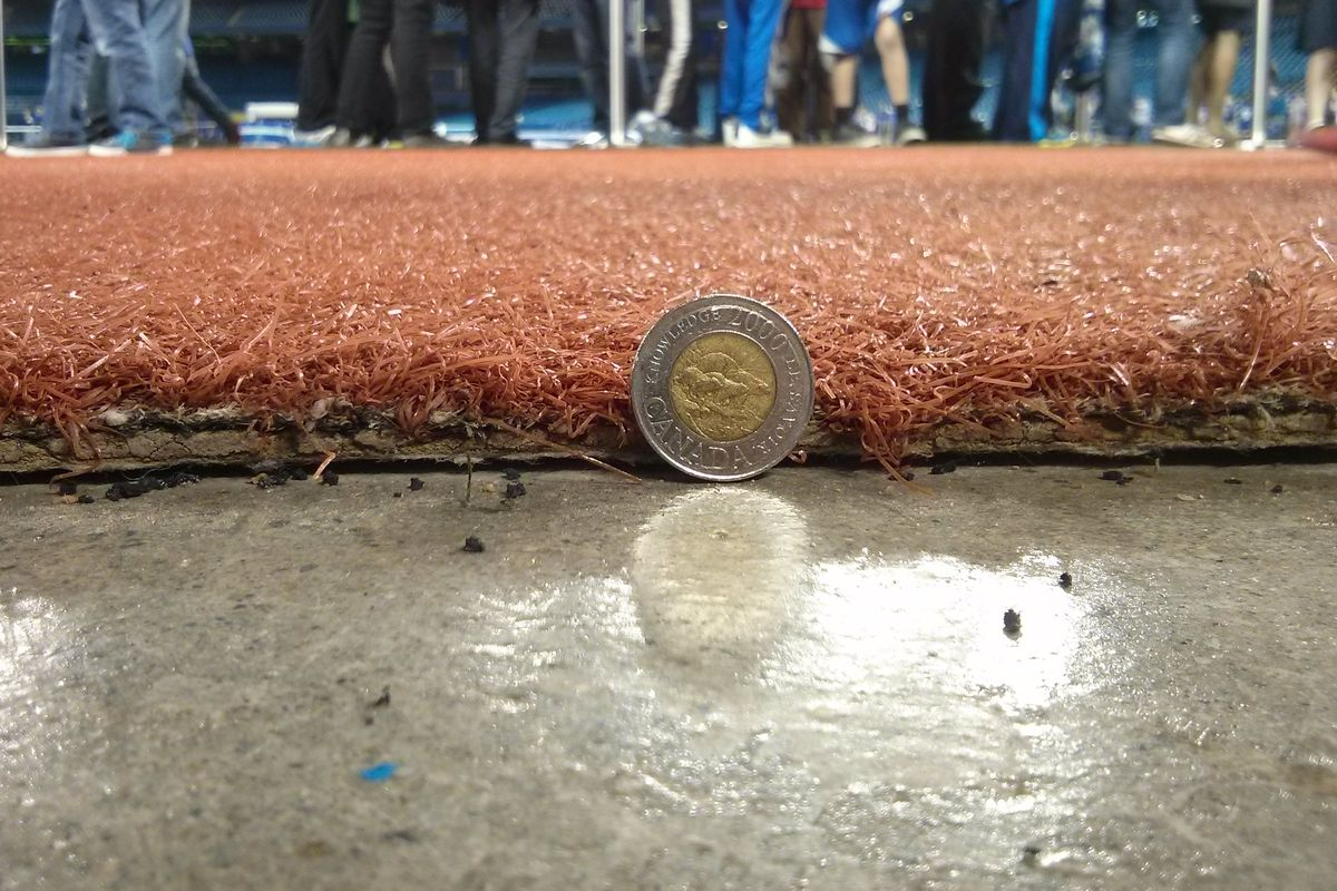 That's how thin last year's turf was. Non-Canadians, the $2 coin shown for reference is 2.8 cm in diameter.