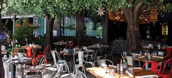 Restaurant patio surrounded by trees