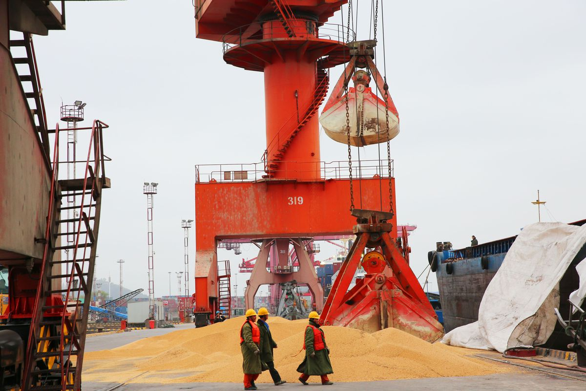 Chinese workers walk past imported soybeans at a port in Nantong. If Trump starts a trade war with China, US soybean exports to China could plunge.