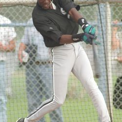 Michael Jordan takes a cut during his tryout with the White Sox at Spring Training in Sarasota, FL.