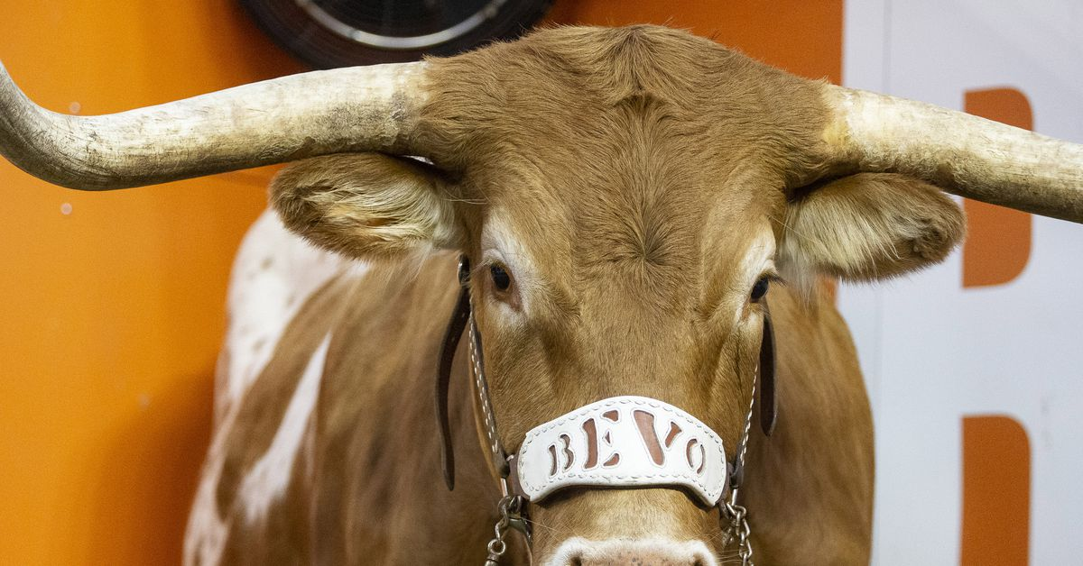 And - Opponent: Know an Valley Texas Longhorns Better  The