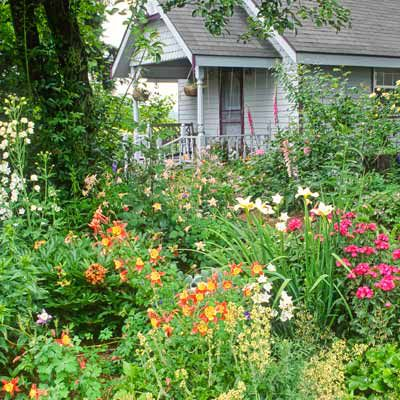 Best Plants For A Cottage Garden This Old House