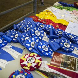 Ribbons sit on a table next to the show arena during the Wild Horse and Burro Show at the Legacy Events Center in Farmington on Friday, June 9, 2017.