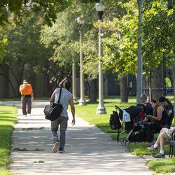 McGuane Park in Bridgeport.   Tyler LaRiviere/Sun-Times