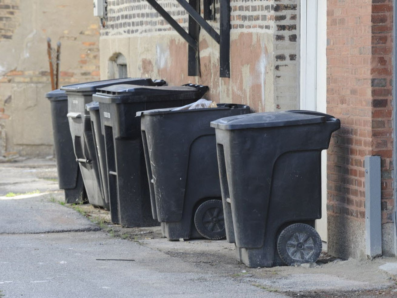 Garbage bins in a Chicago alley