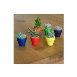 """Color Theory Collection of 3 Succulents, $48 at <a href=""""http://www.thesill.com/collections/succulents/products/color-theory-collection"""">The Sill</a>"""