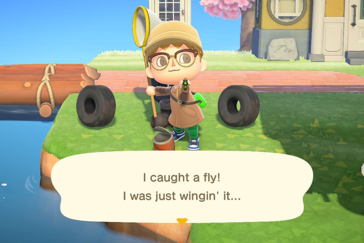 Catching a fly in Animal Crossing New Horizons