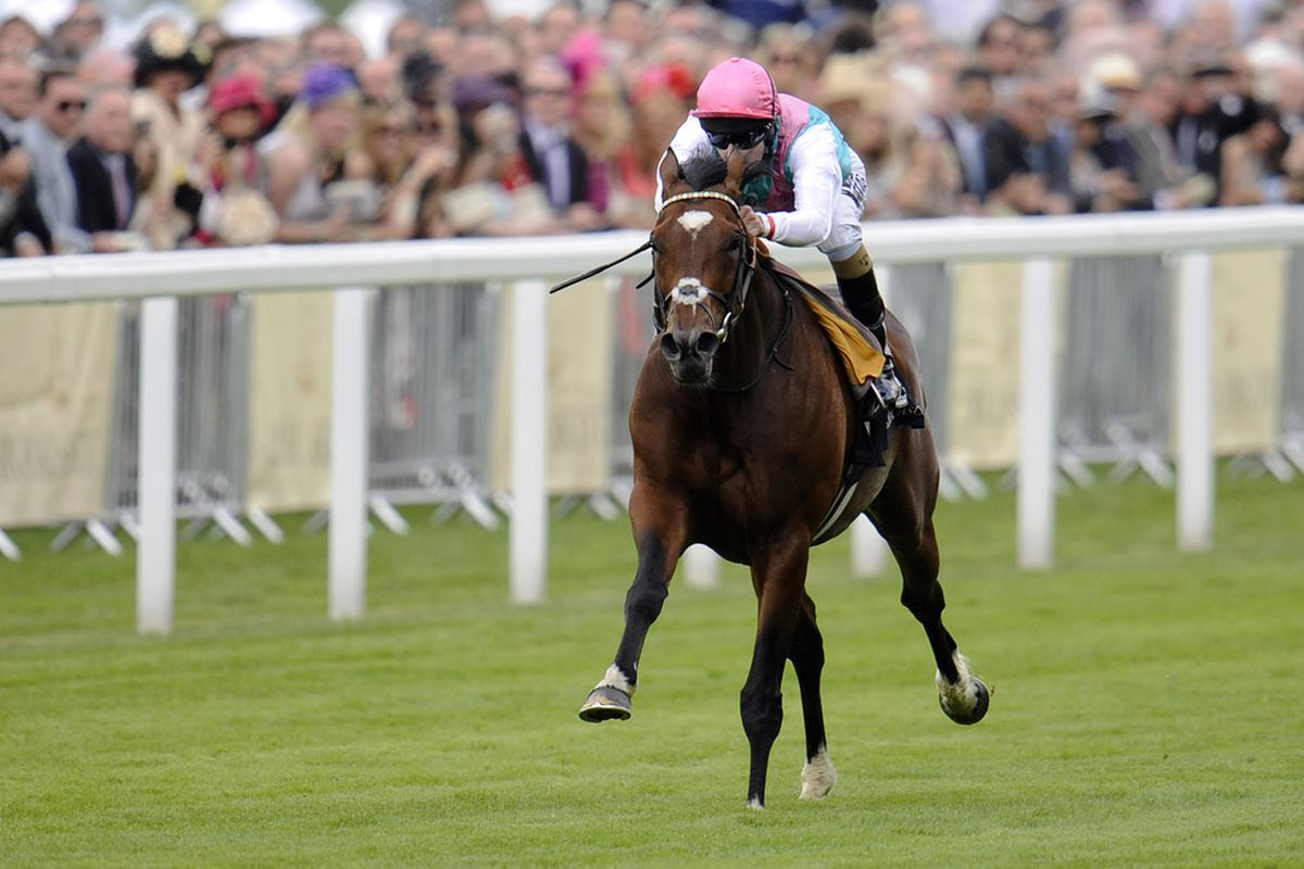 Frankel (GB), the top rated horse in the world, could square off against Epsom Derby winner Camelot (GB) in the Group 1 Qipco Champions Stakes on British Champions Day.