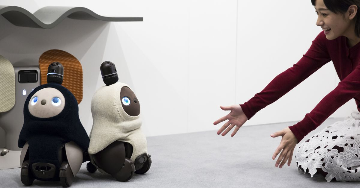 Japan's Latest Home Robot Isn't Useful