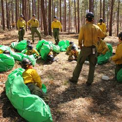 In this April 12, 2012 photo provided by the Cronkite News, Phillip Maldonado, a squad leader with the Granite Mountain Hotshots, trains crew members on setting up emergency fire shelters outside of Prescott, Ariz. On Sunday, June 30, 2013, 19 members of the Prescott-based crew were killed in the deadliest wildfire involving firefighters in the U.S. for at least 30 years. The firefighters were forced to deploy their emergency fire shelters - tent-like structures meant to shield firefighters from flames and heat - when they were caught near the central Arizona town of Yarnell, according to a state forestry spokesman.