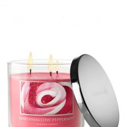 """<a href=""""http://www.bathandbodyworks.com/product/index.jsp?productId=12076071&cm_vc=200"""" rel=""""nofollow"""">Bath and Body Works Marshmallow Peppermint Scented Candle</a>: $19.50"""