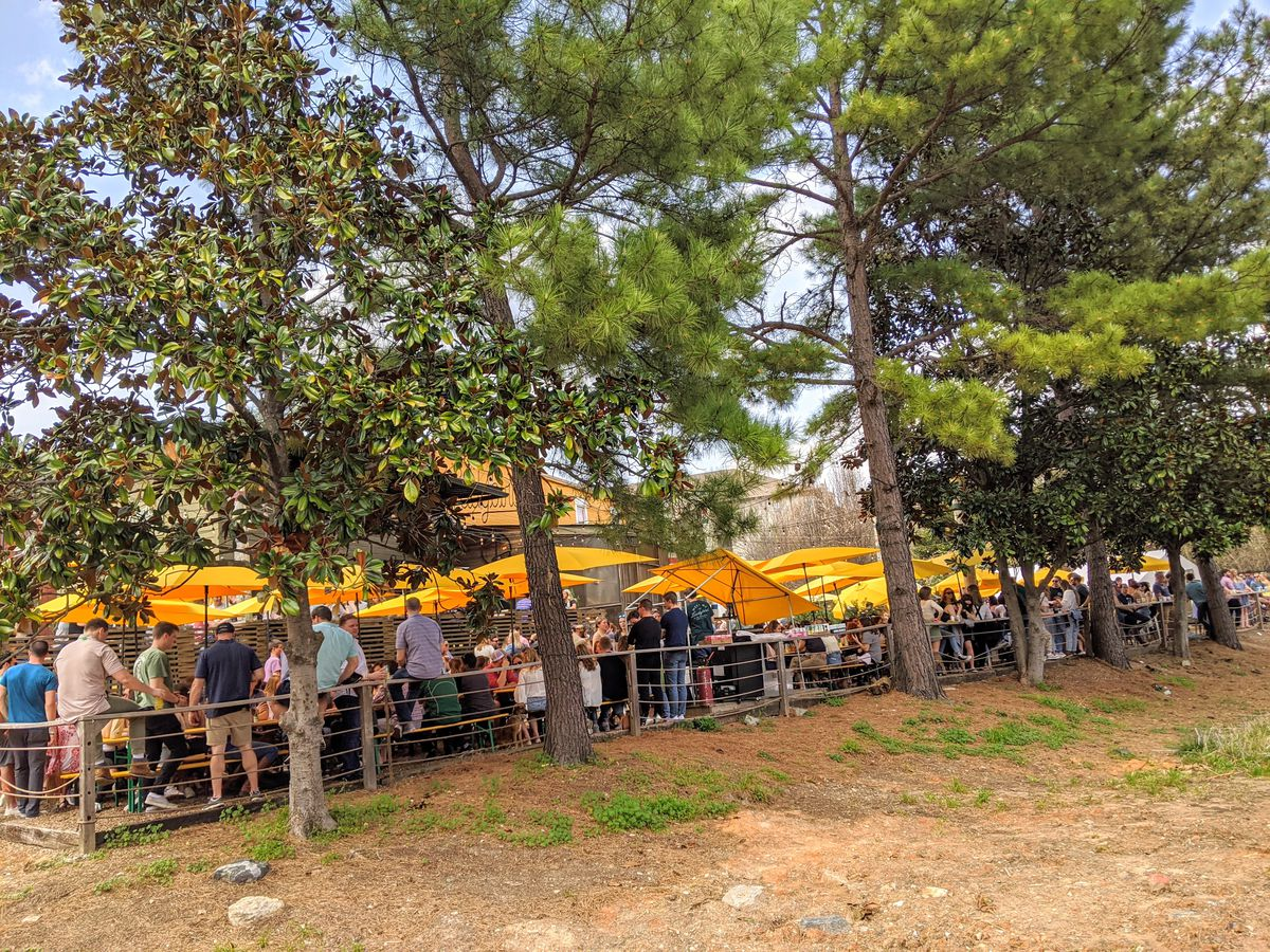 A large patio beneath trees with many people under large yellow umbrellas.