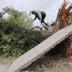 Alex Keele skateboards off of a fallen tree trunk onto a section of sidewalk that was raised when the tree fell during a windstorm in Salt Lake City on Tuesday, Sept. 8, 2020.