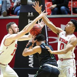 Hawaii Warriors guard Drew Buggs (1) loses the ball as Utes forward David Collette (13) and guard Sedrick Barefield (0) fight for control as Utah hosts Hawaii at the Huntsman Center in Salt Lake on Saturday, Dec. 2, 2017.