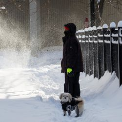 A person walks a dog in the Edgewater neighborhood, Tuesday morning, Feb. 16, 2021, after a snowstorm dumped over a foot of snow in Chicago starting Sunday night. Snow is expected to continue to fall until Tuesday night.