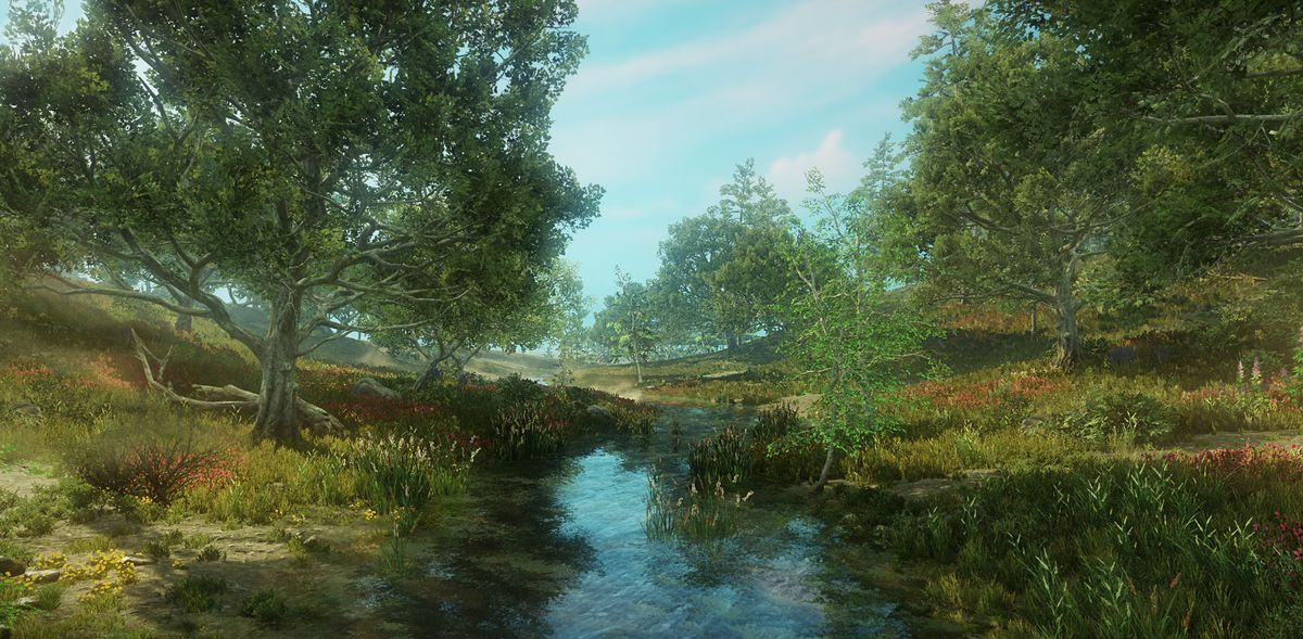 New World - stream running through grassy land