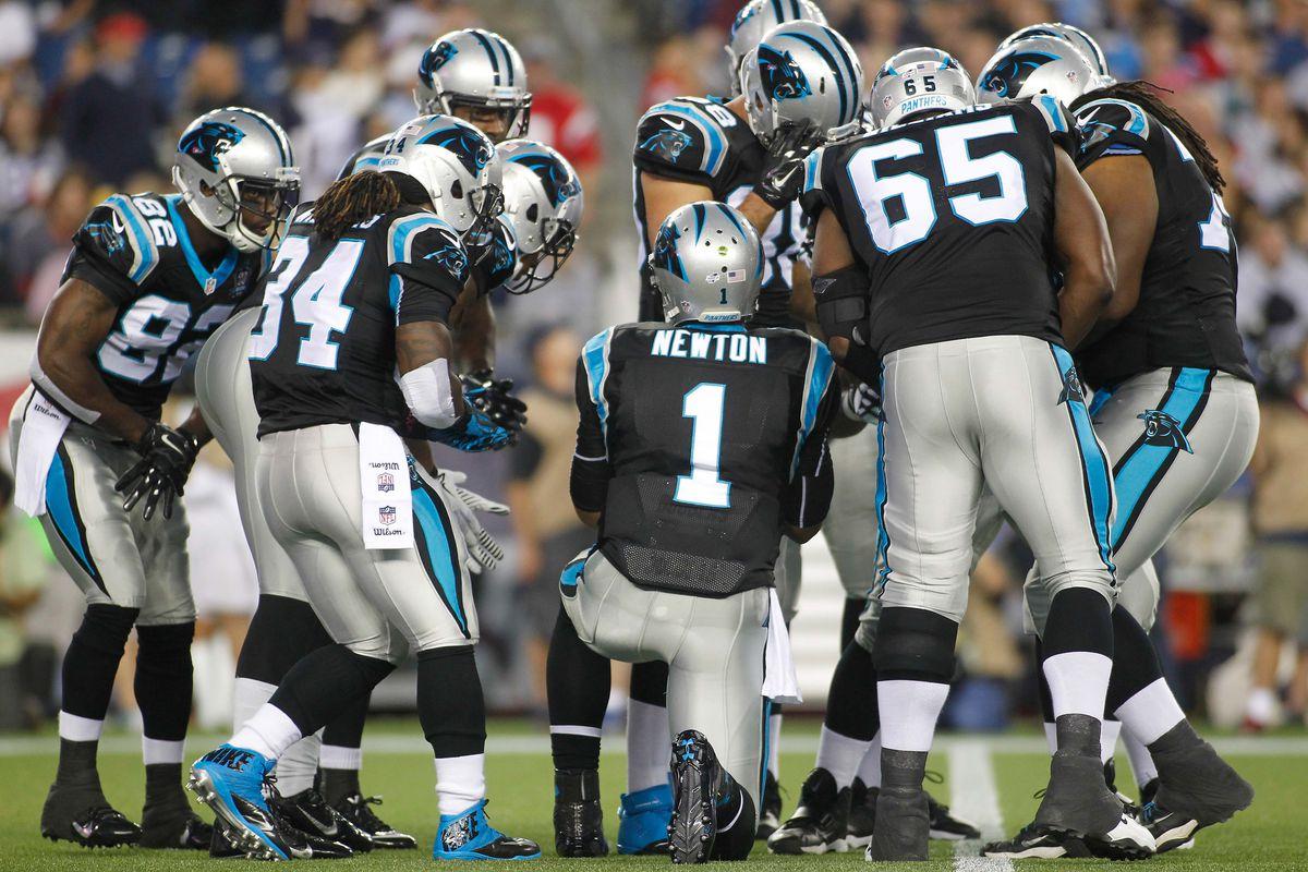 2014 Carolina Panthers season