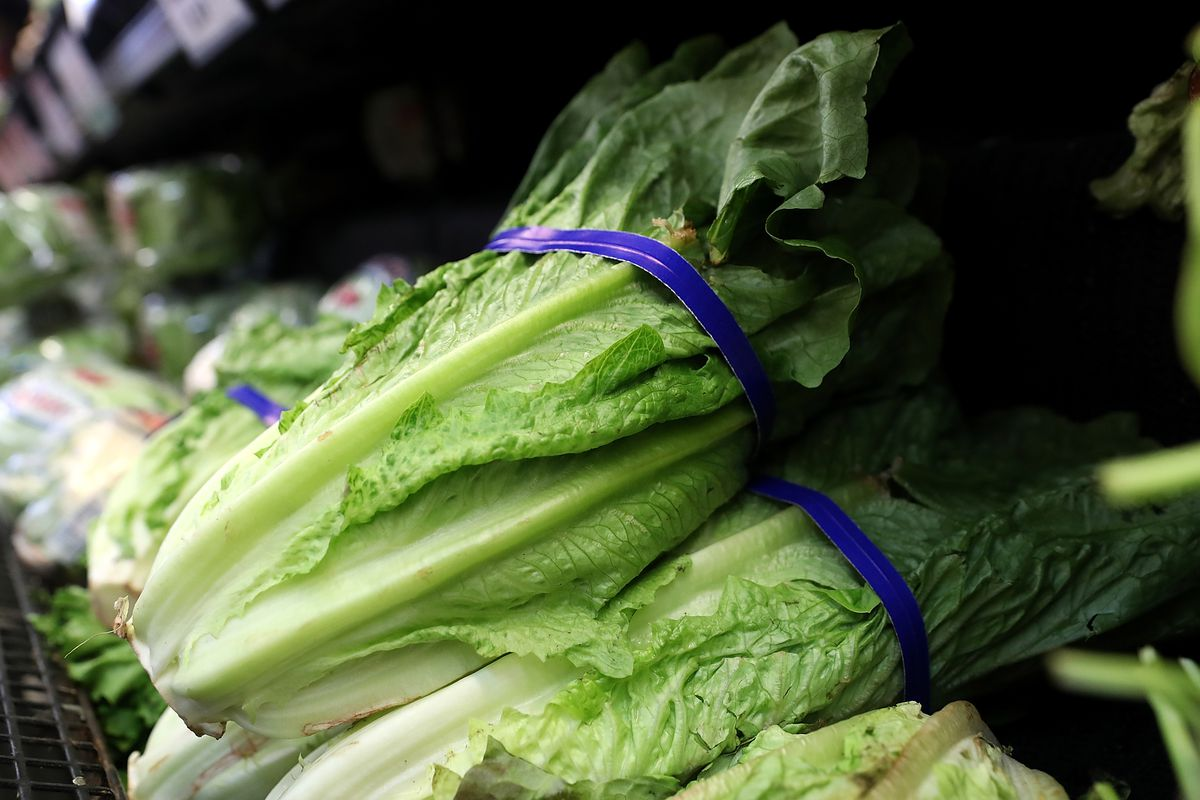 Is it safe to eat romaine lettuce from Salinas Valley again?