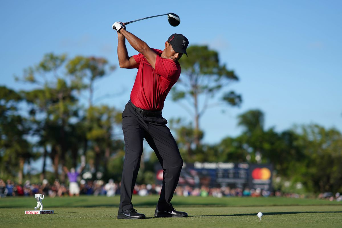 a report card on tiger woods  a real golfer with dropping masters odds