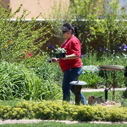 Key Bank employee Nancy Gomez works in the GEM Court Garden of the George E. Wahlen Department of Veterans Affairs Medical Center at Key Bank's national Neighbors Make The Difference Day in Salt Lake City on Wednesday, May 14, 2014. Nearly 7,000 bank employees, across the country and in Utah, will spend the afternoon volunteering for a wide array of community service projects.